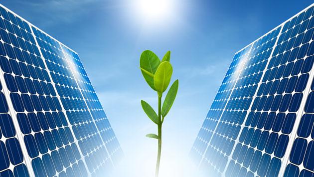 Solar_Energy_with_Plant